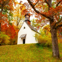 A chapel in the woods of the Bavarian countryside.